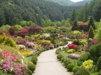 8D6N(GDKAI) Korea Busan/Seoul/Nami Island +Jeju Island The Garden of Morning Calm